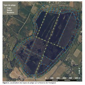 plan des pièges de la réserve